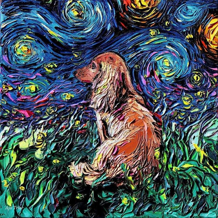 starry night dog series aja doxie