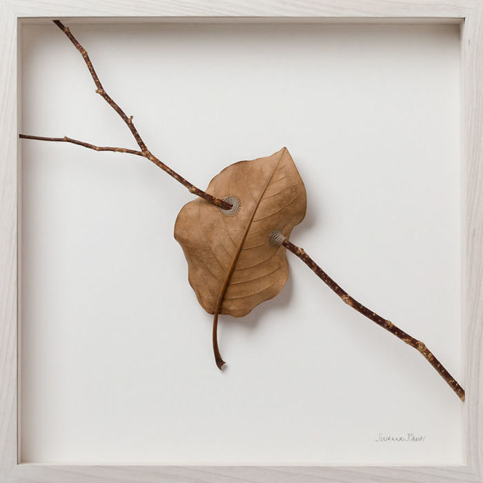 susanna bauer dried leaves crochet art suspended