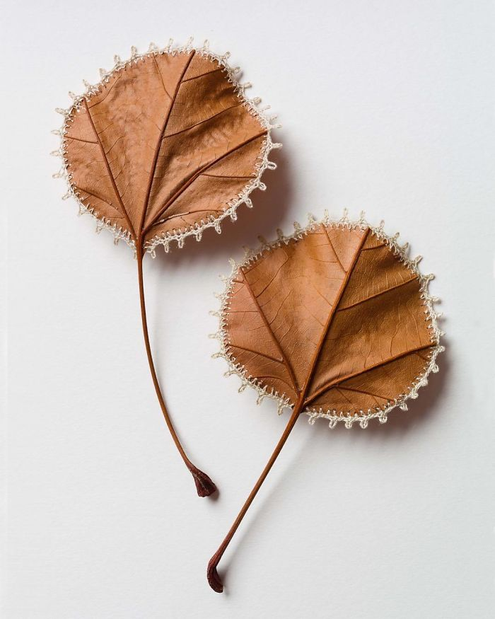 susanna bauer dried leaves crochet collection two by two