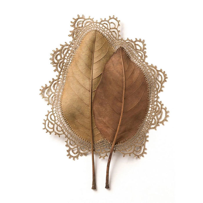 susanna bauer dried leaves crochet everything that surrounds us