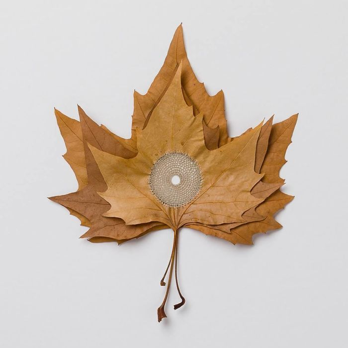 susanna bauer dried leaves crochet for what binds us
