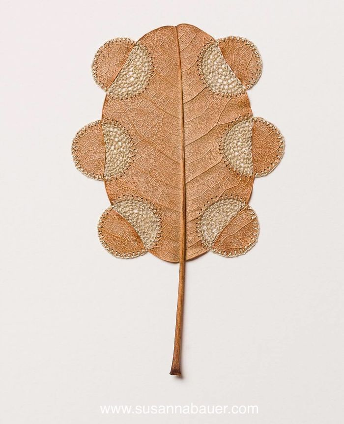 susanna bauer dried leaves crochet opening out