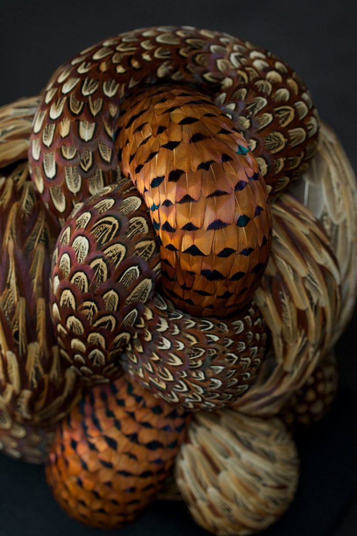 tussle 2016 feather sculptures kate mccgwire