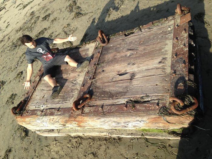 washed up on dillon beach - interesting beach things