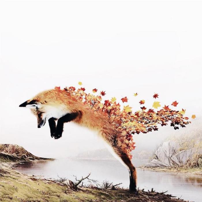 wolf flowers surrealism photography luisa azevedo