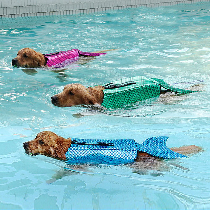 albabara sparkly life jacket dog swimming vest