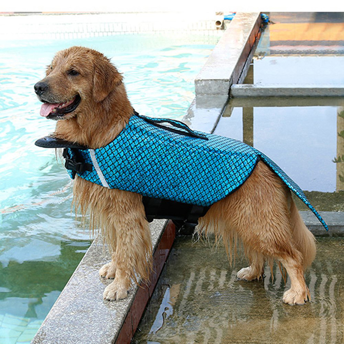 albabara sparkly life jacket dog vest