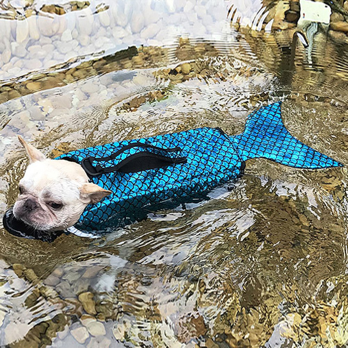 albabara sparkly life jacket mermaid dog