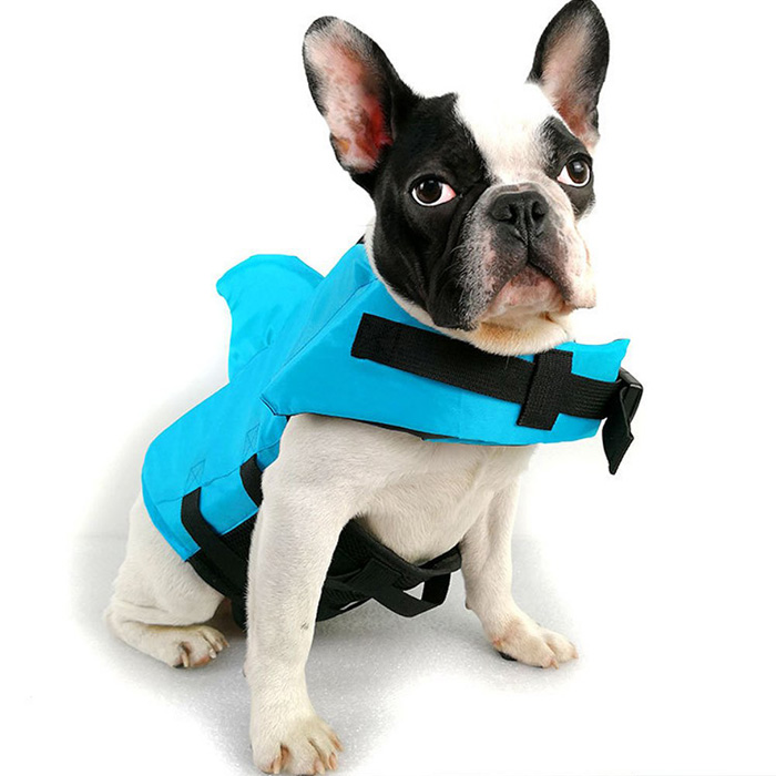 amazon shark fin life jacket for dogs