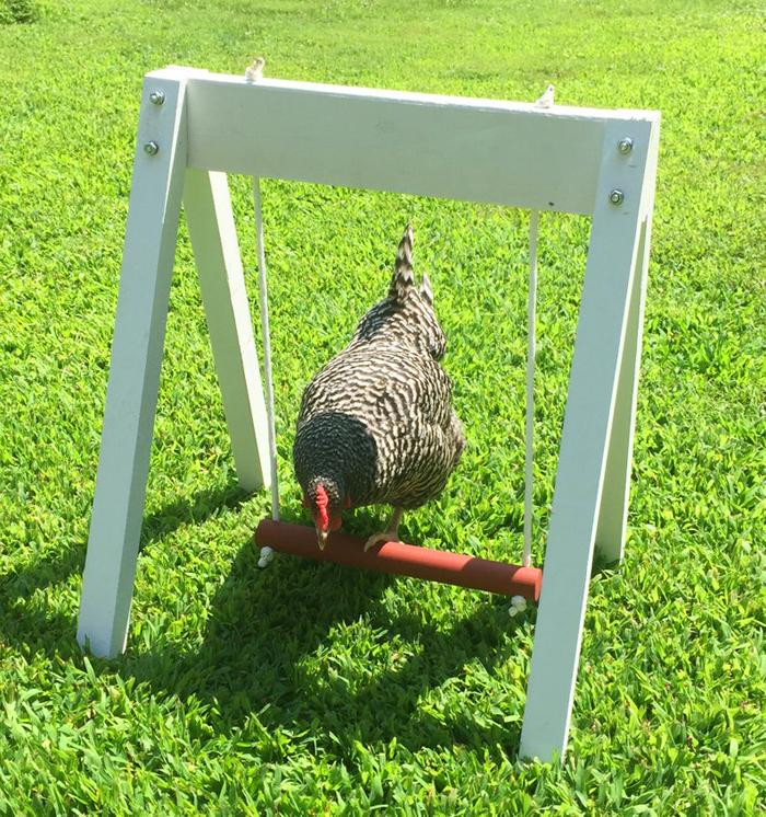 amish made chicken swing set