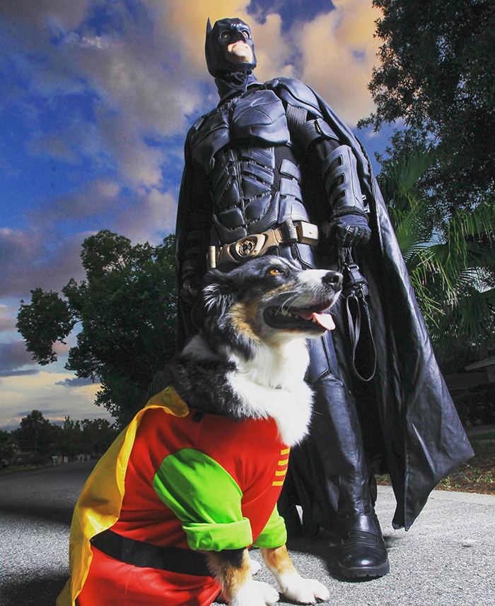 batman pet rescuer chris van dorn