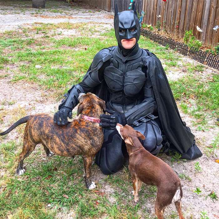 batman pet rescuer saves animals from euthanasia