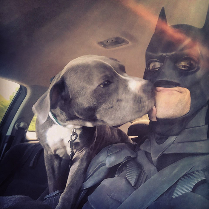 batman pet rescuer transports rescue animals