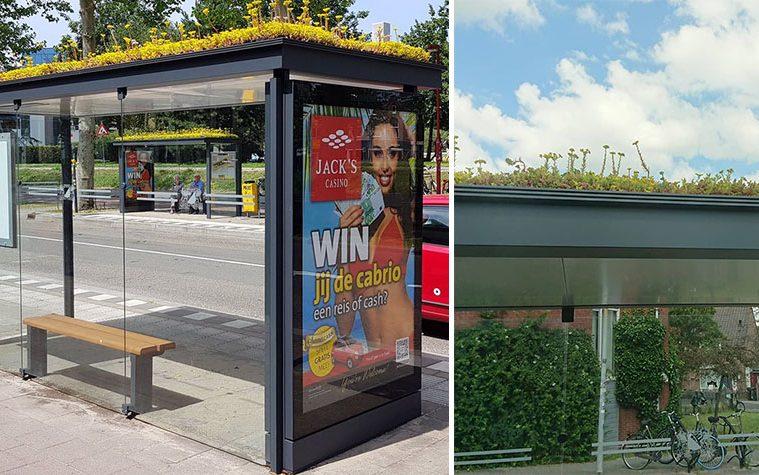 bee bus stops