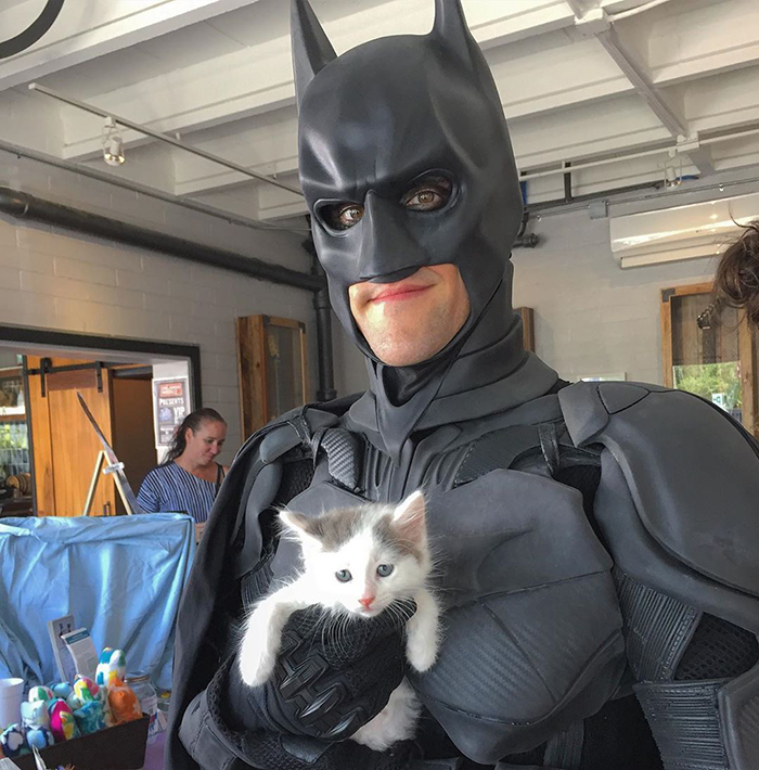 chris van dorn batman pet rescuer