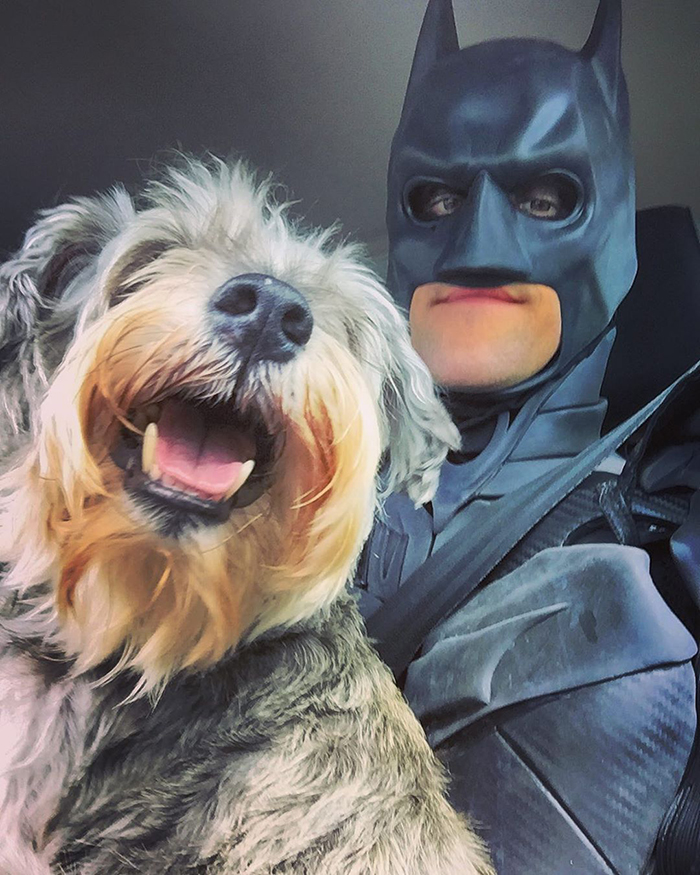 chris van dorn batman4paws