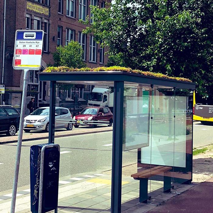 city in netherlands transforms bus stops into bee stops utrecht