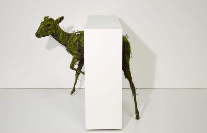 deer trapped emeric chantier plant sculptures
