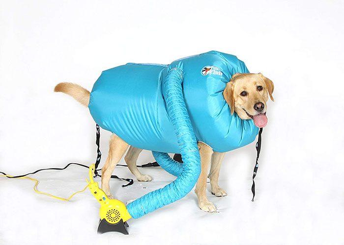 dog dryer jacket