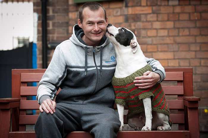 dog knitted coat