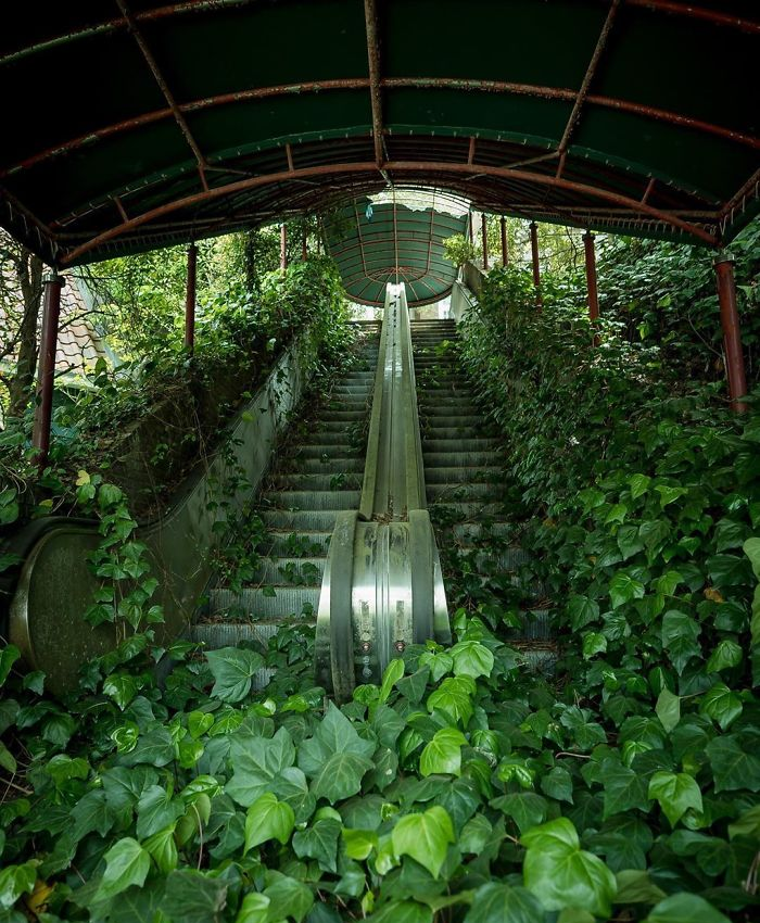 escalators nature reclaiming taking over
