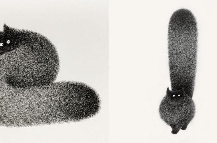 fluffy black cats