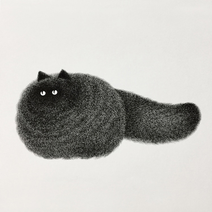 fluffy black cats ink drawings kamwei fong black furballs