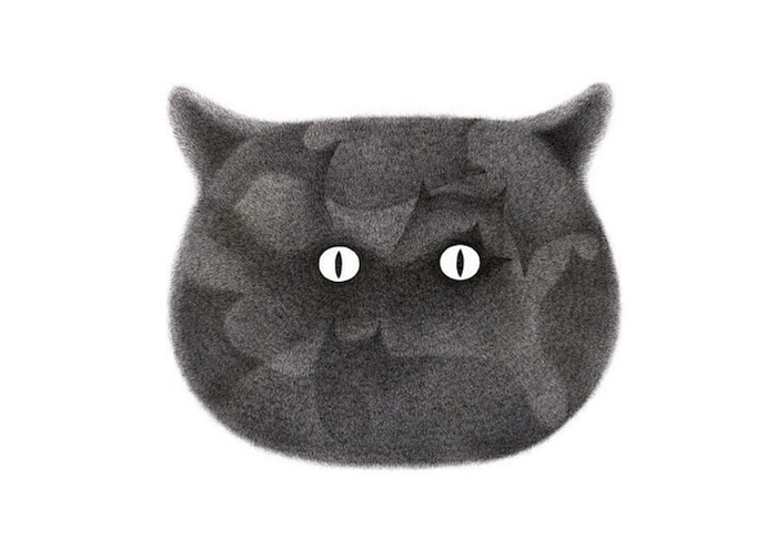 fluffy black cats ink drawings kamwei fong cat face
