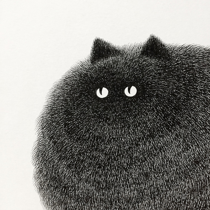 fluffy black cats ink drawings kamwei fong expressive eyes