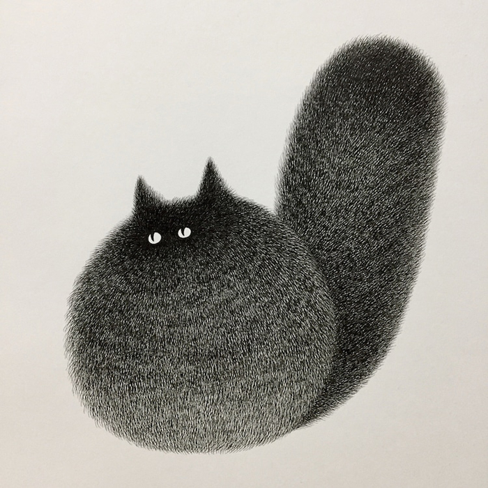 fluffy black cats ink drawings kamwei fong