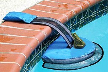 froglog critter-saving escape ramp