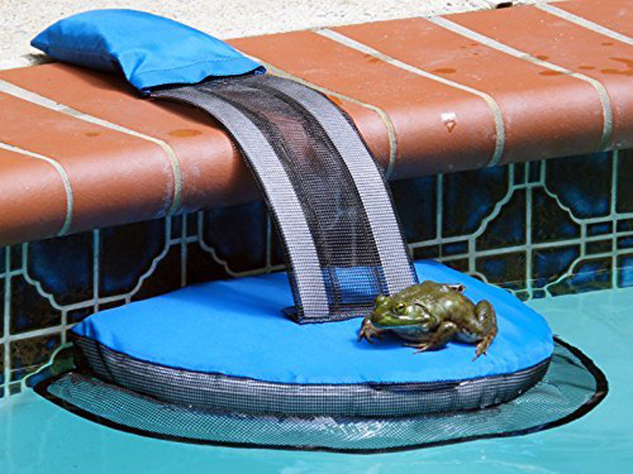 froglog critter-saving escape ramp pool