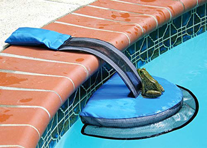 froglog critter-saving escape ramp