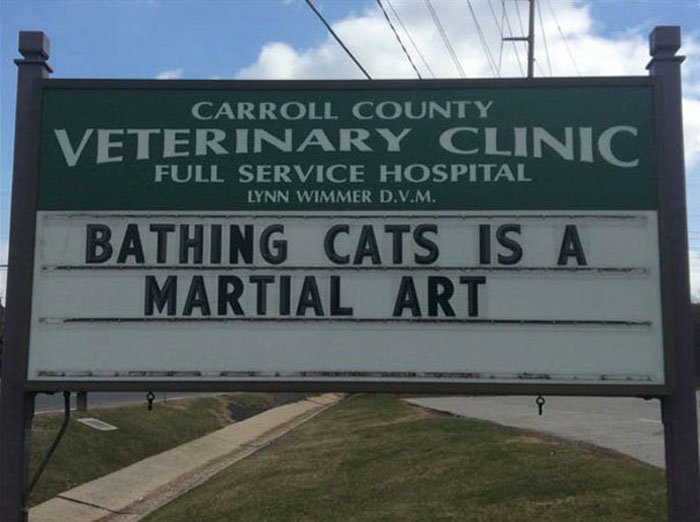 funny cat jokes vet clinic signs bathing cats martial arts