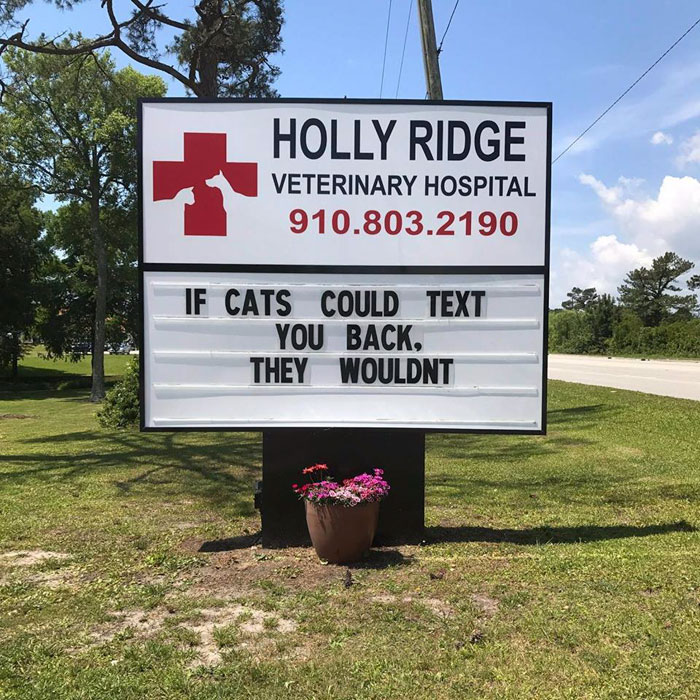 funny cat jokes vet clinic signs cats do not text
