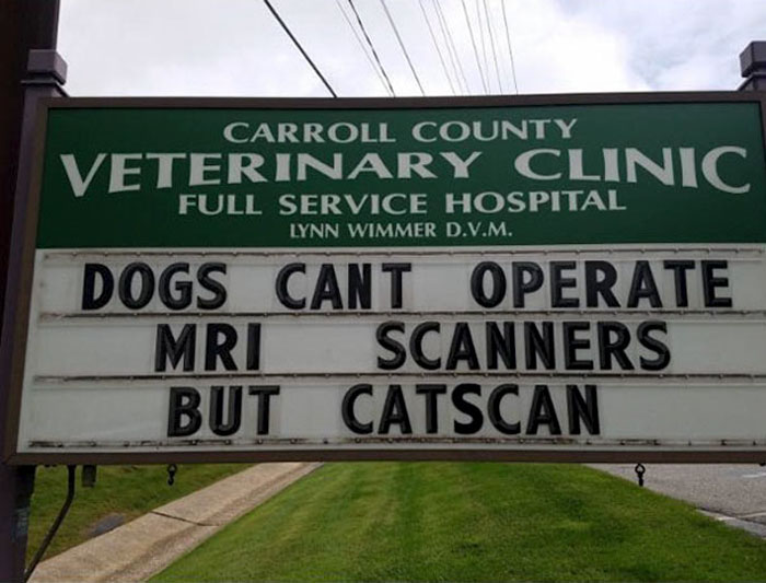 funny cat jokes vet clinic signs catscan