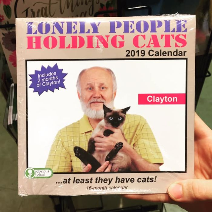 funny fake products obvious plant lonely people holding cats