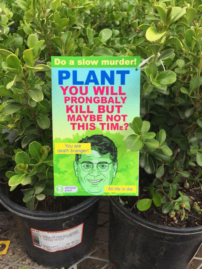 funny fake products obvious plant murder plant