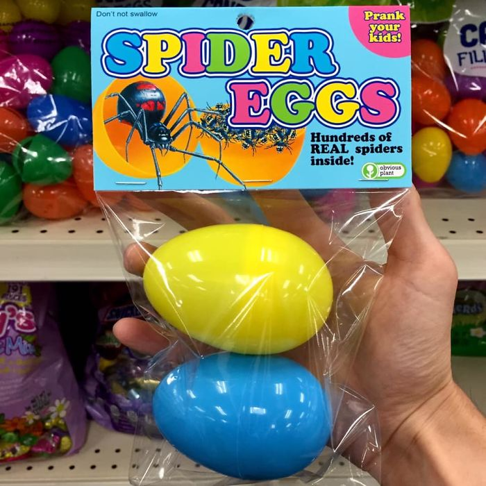 funny fake products obvious plant spider eggs