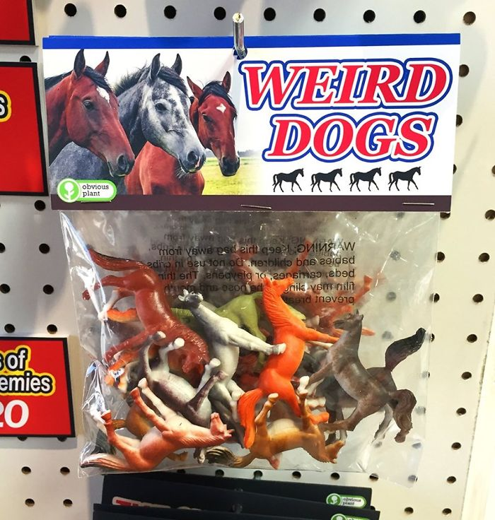 funny fake products obvious plant weird dogs