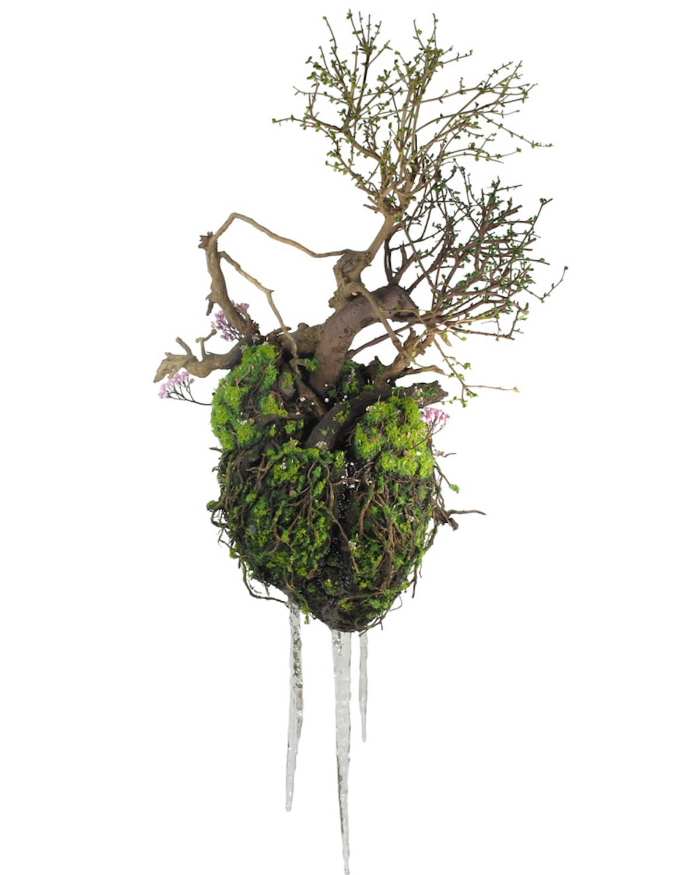 human heart emeric chantier plant sculptures
