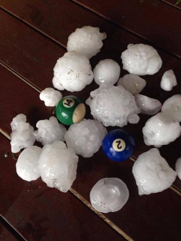 killer hail scary animals in Australia