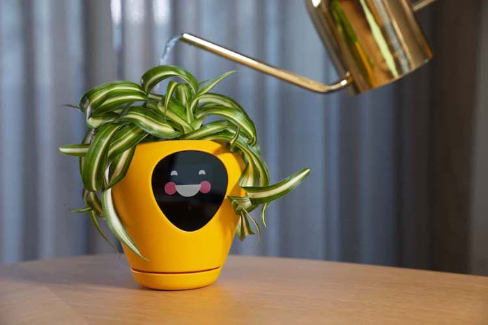 lua smart planter mu design happy animation