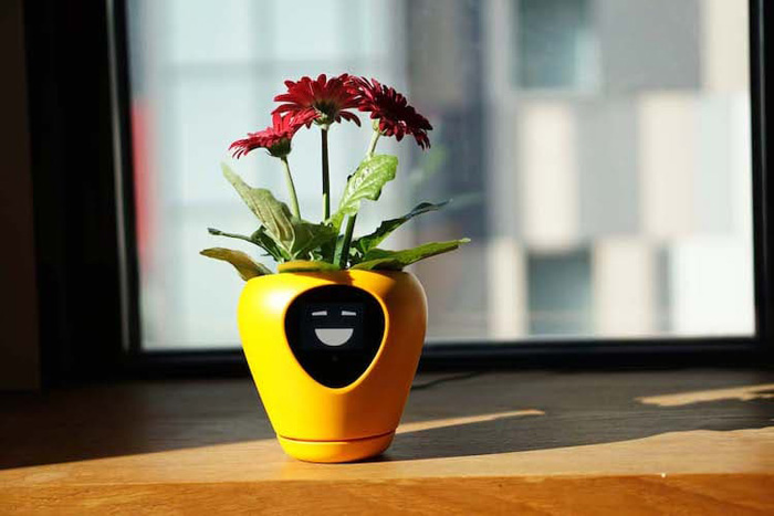 lua smart planter mu design sunflower yellow