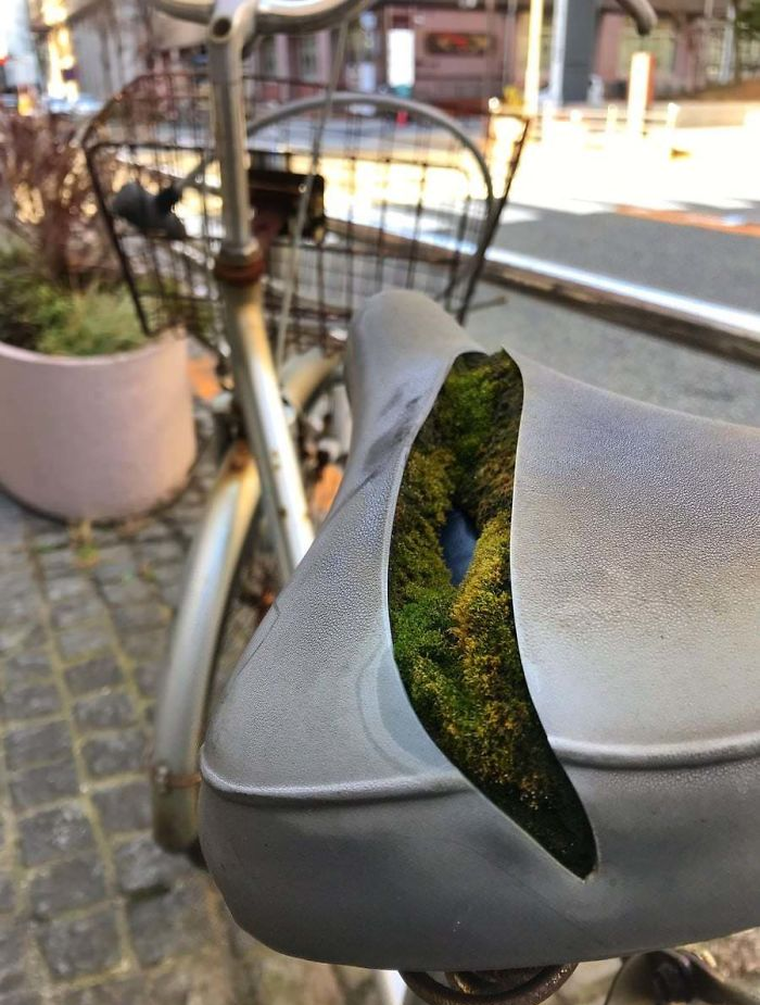 moss in bike seat nature reclaiming taking over