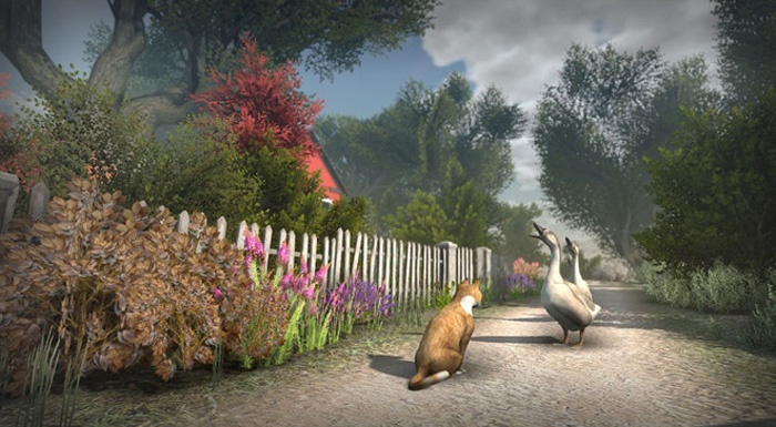 peace island gain animal confidence to unlock side quests