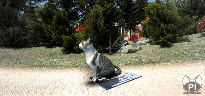 peace island open world game cat character