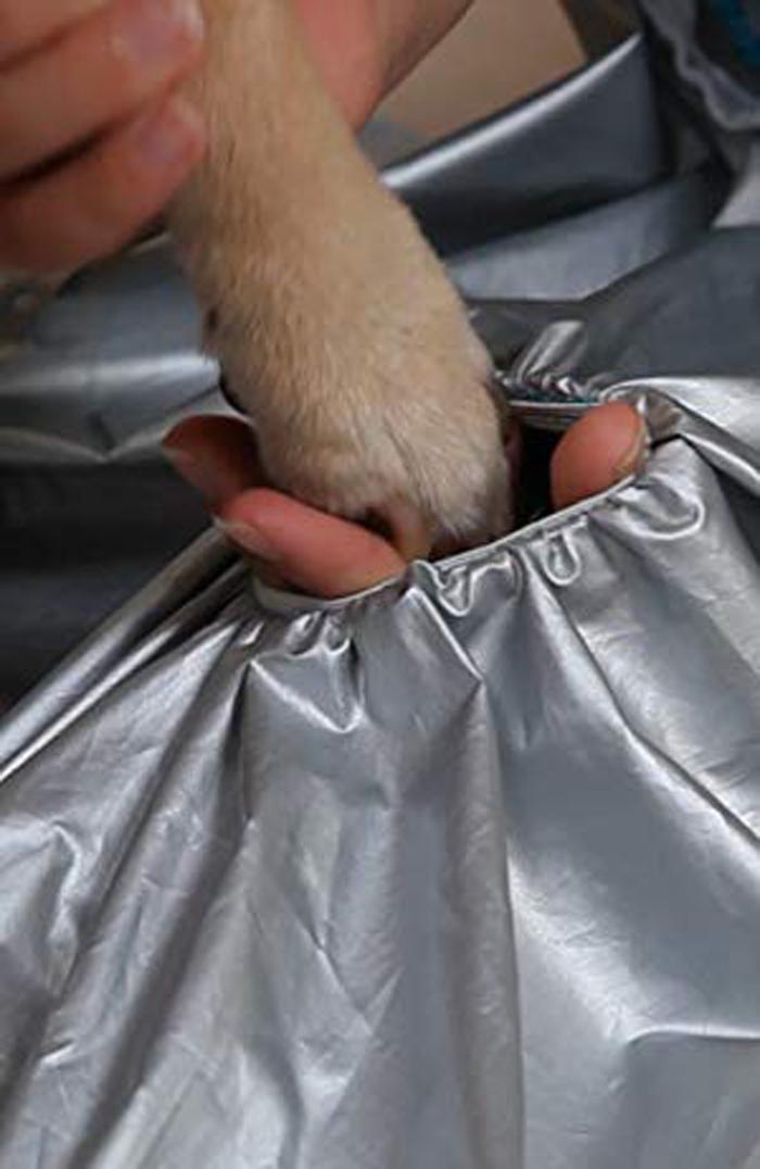 puff-n-fluff dog dryer jacket leg holes