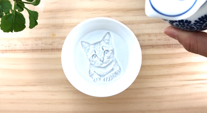 redestu sauce dish cat painting