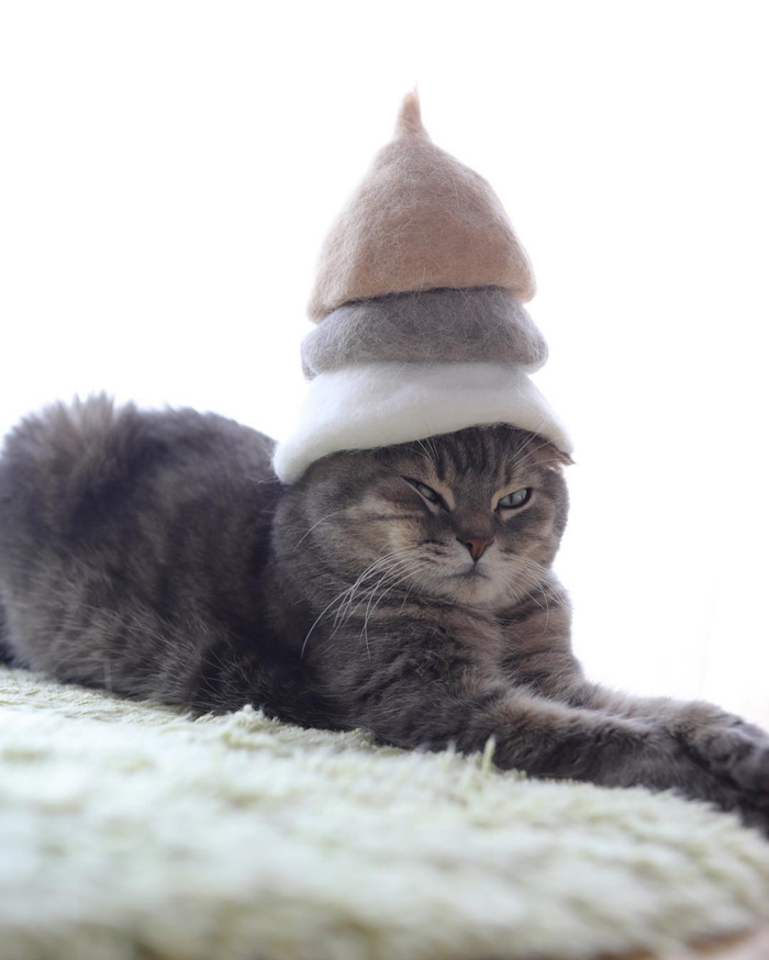 ryo yamazaki cat hair hats nya multilayered crowns